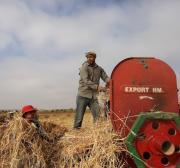 Israel confirma retomada do uso de pesticidas ao longo da cerca de Gaza