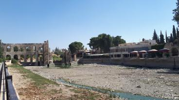 Propagação da leishmaniose alarma as áreas controladas pelo regime de Hama, na Síria [Ula Muhammed/ Agência Anadolu]