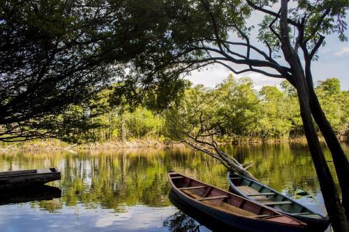 Foto que retrata a paisagem de Borba, município do Amazonas [WikiMedia]