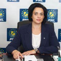 Angelica Fădor, deputatul care ne reprezintă cu cinste în Parlamentul României