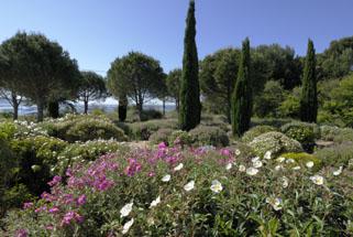 amenagement jardin mediterraneen