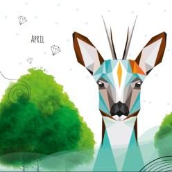 kalender 2017 monkimia Tierillustrationen