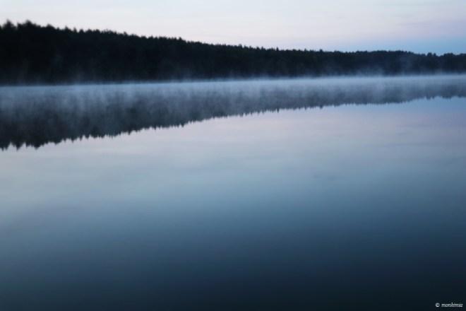 naturfotografie feldberger seenlandschaft