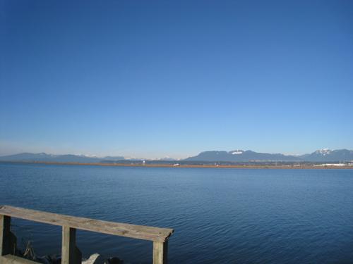 Viewpoint along Richmond's West Dyke Trail