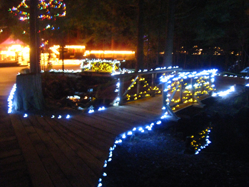 Twinkling walkways around Capilano Bridge park