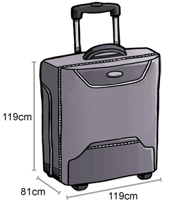 baggage-checked-baggage_14