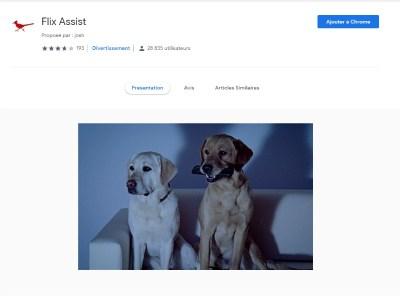 extension Flix Assist pour Google chrome