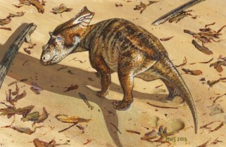 baby-chasmosaur-skrepnick-1024x666