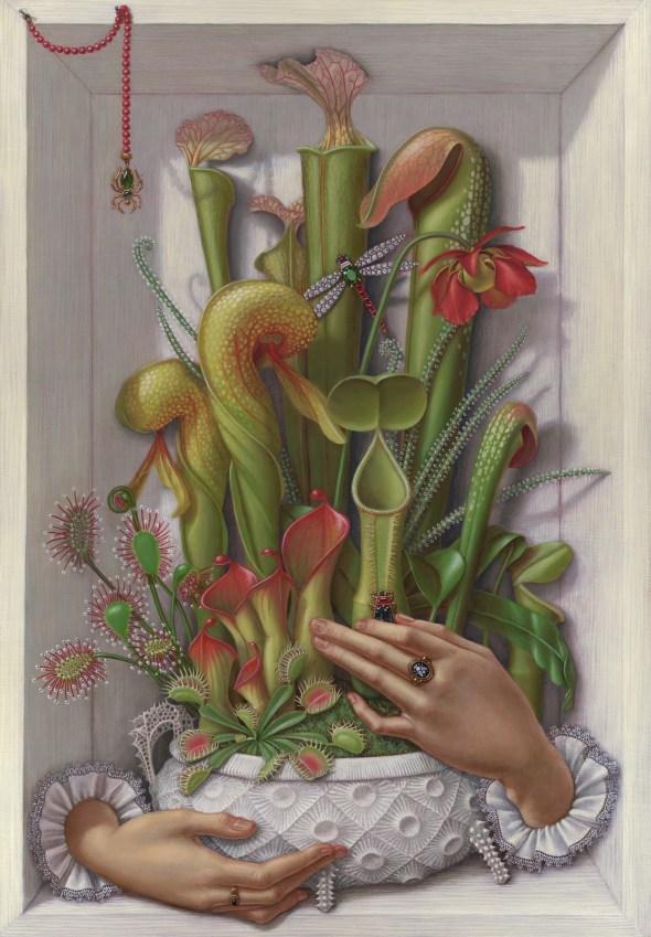 carnivororous_plants_madeline