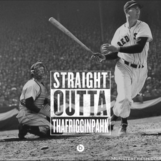 ted williams fuckin pahk