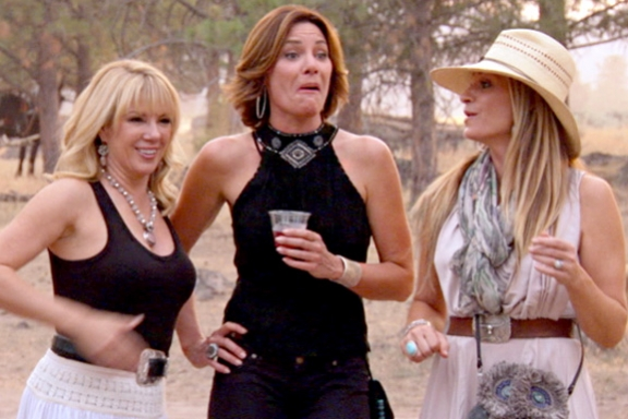 wap-real-housewives-of-new-york-season-6-rhony-throws-the-hatchet