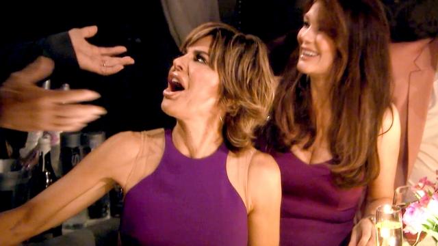 real-housewives-of-beverly-hills-season-5-when-harry-met-lisa