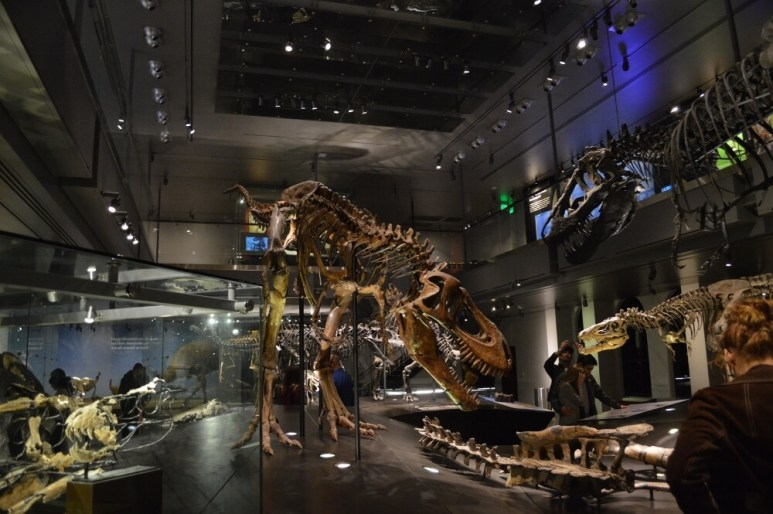 First Fridays at the Natural History Museum of Los Angeles County