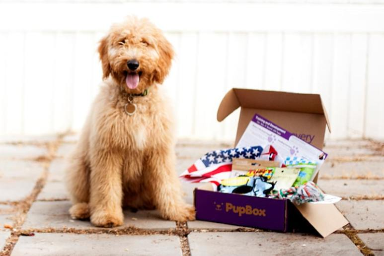 The PupBox and what looks like one happy customer. Pic credit: PupBox