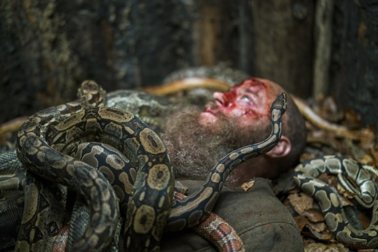 Ragnar lies in the snake pit after his fall from the cage above