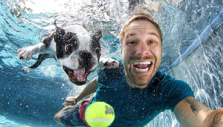 Finding Fido host Seth Casteel with an under-water dog in one of his trademark images