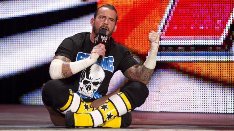 CM Punk in the WWE