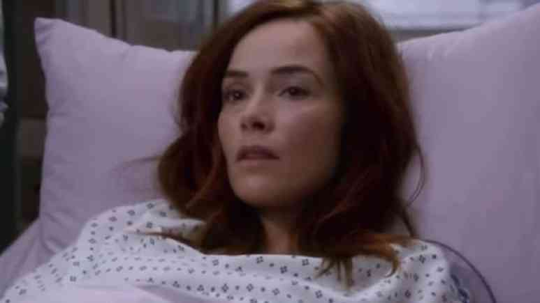 Abigail Spencer as Megan Hunt on Grey's Anatomy cast.