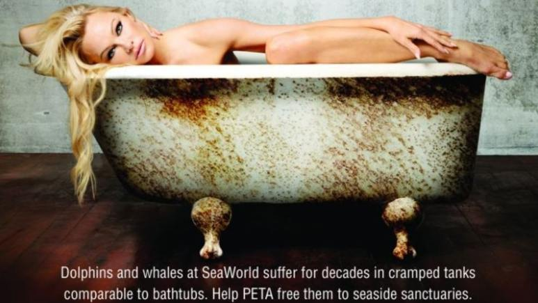Pamela in a press image handout from PETA showing a visual metaphor of what life is like for Corky. Pic credit: PETA