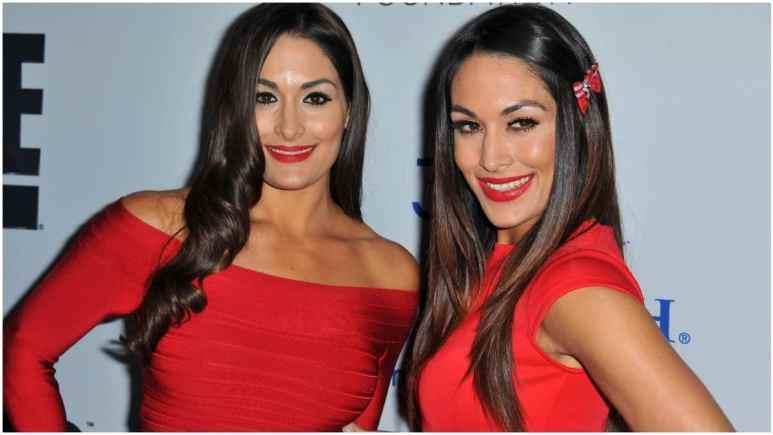 When are the Bella Twins' estimated due dates?