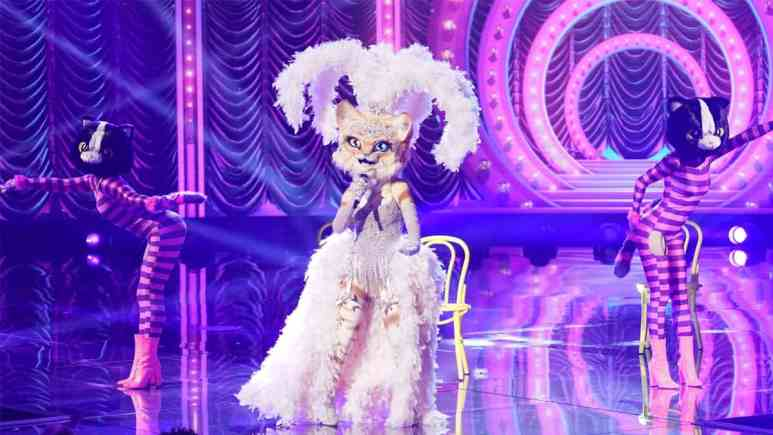 The Kitty on The Masked Singer