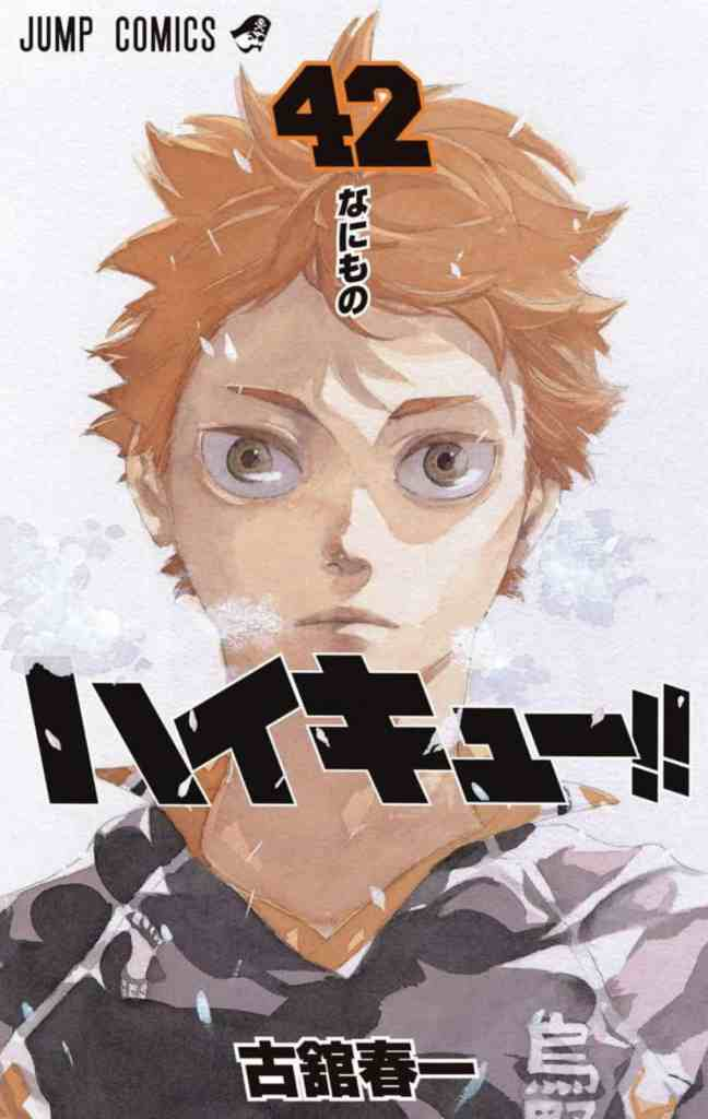 Haikyuu Manga Volume 42 Cover Art Shoyo Hinata