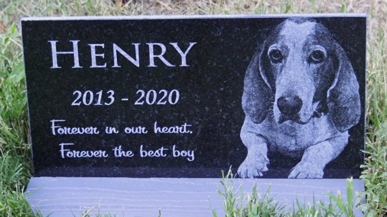 The headstone for Henry, Danielle Dodd's beloved dog