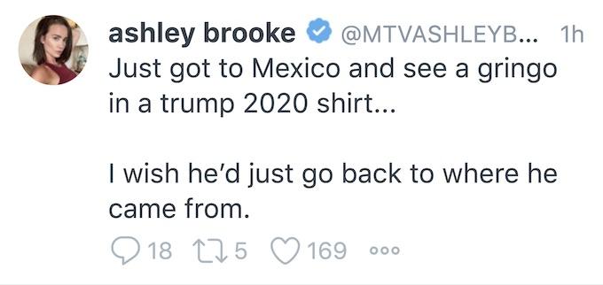 ashley mitchell mexico tweet