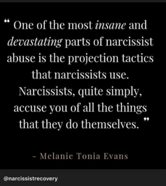 Lauren Comeau posts cryptic message about narcissists on her Instagram story