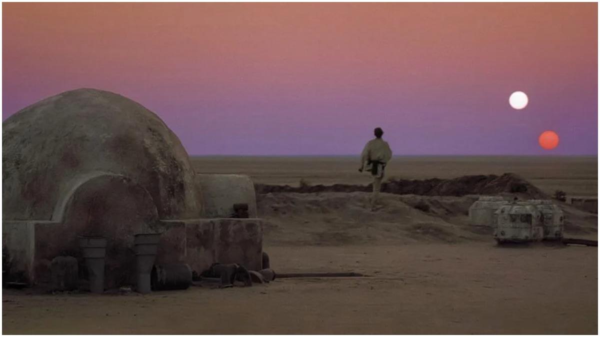 Luke and the suns
