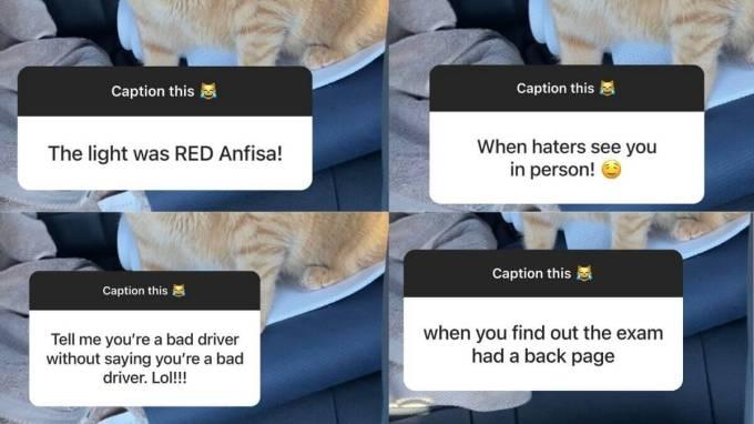 Fans share caption ideas