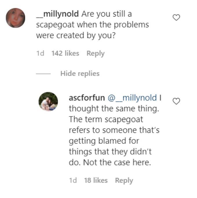 Comments on Erika Jayne's Instagram post.