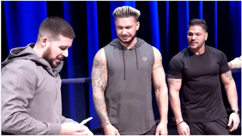 vinny pauly ronnie jersey shore