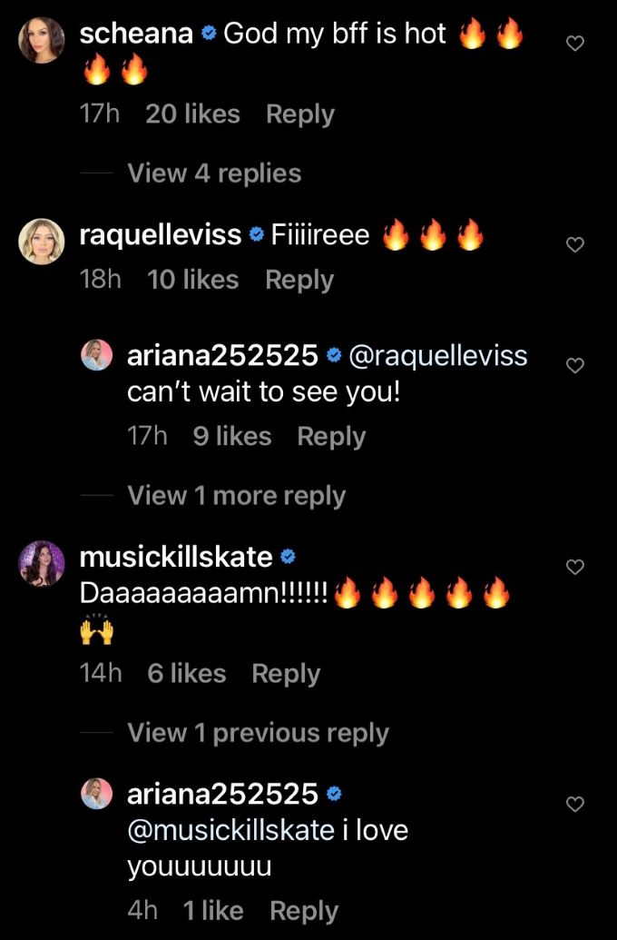 Comments from Ariana's IG post.