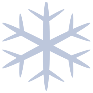 Snow Removal in Queens, NY