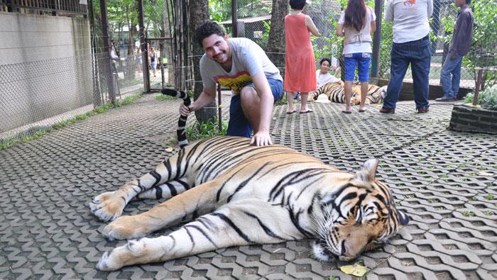 Visita-a-Tiger-Kingdom-4