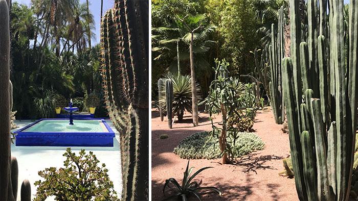 Que-hacer-Marrakech-majorelle