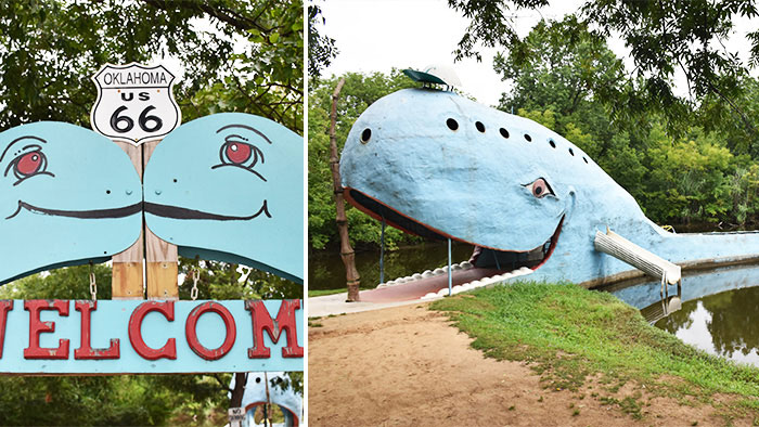 Guia-Ruta-66-etapa-2-blue-whale