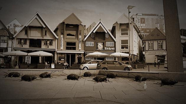 street coachroaches1