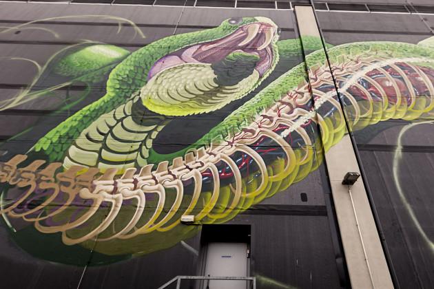 Nychos - Transparent Snake Linz 2016-12