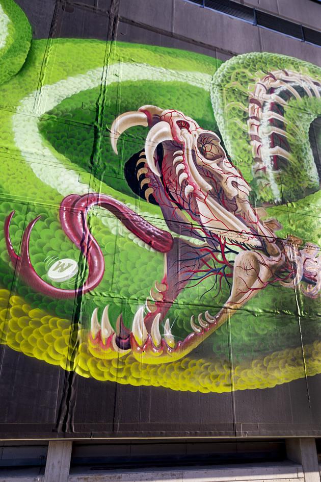 Nychos - Transparent Snake Linz 2016-17