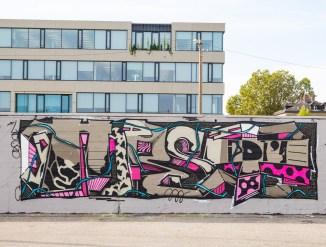 INTRODUCING GRAFFITI ARTIST HORST