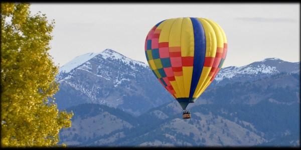 hot air balloon # 81