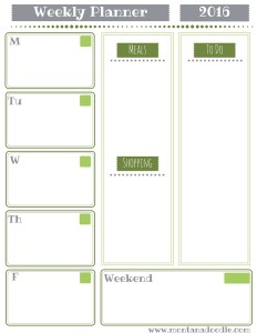 Start your year organized with the green weekly planner from Montana Doodle!