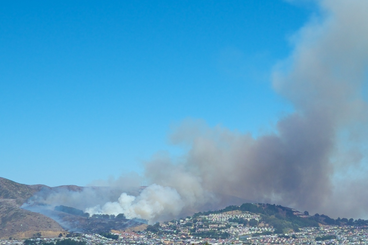 San Bruno Mountain Fire 2