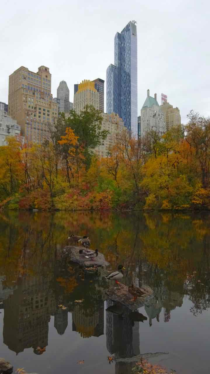 New York - Central Park - Manhattan - di Claudio Leoni