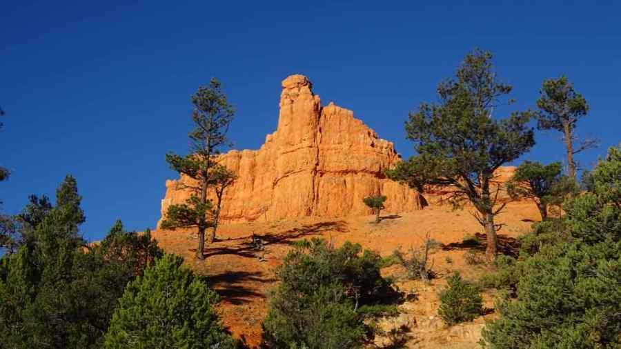 Red Rocks - Bryce National Park - Utah - di Claudio Leoni