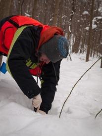 Peter Euclide's winter decomposition - 12.22.2010 - 14.13.37-1