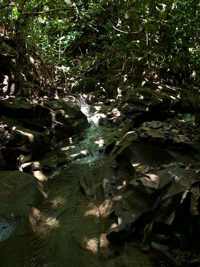 Rio La Leona - 02.01.2010 - 11.02.13