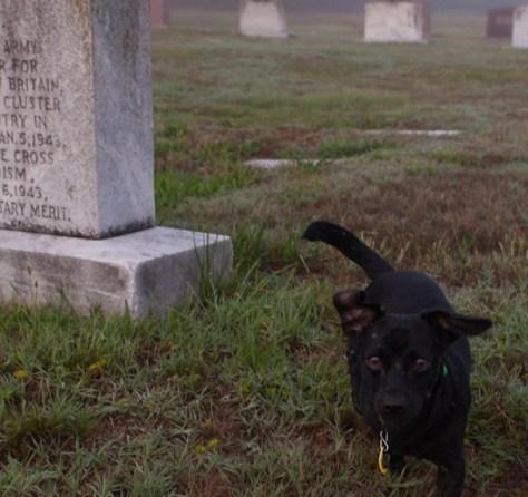 Westview Cemetery - 05.15.2012 - 07.49.06